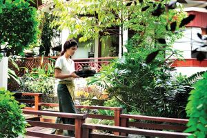 Staff walking in compound garden at Inya Day Spa